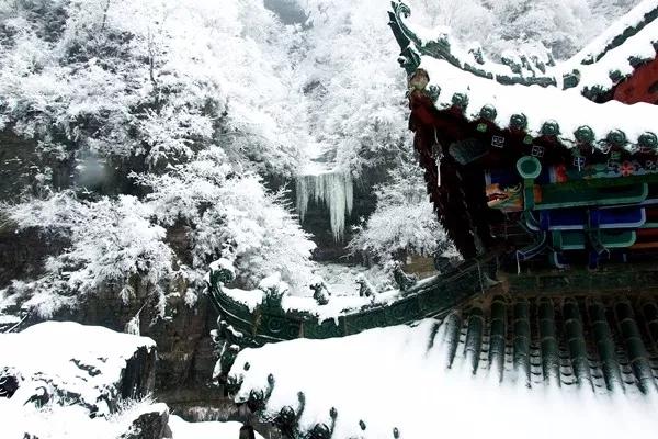 一场冬雪,最美的新乡南太行是这样的......