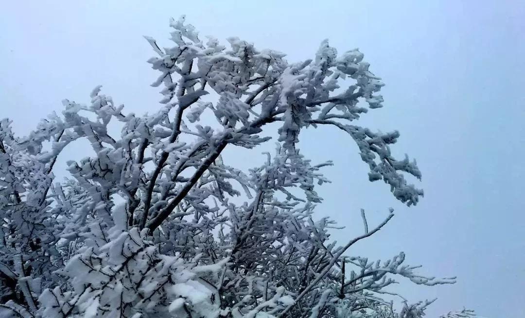 新乡南太行雪后五大好去处,美得让人窒息!