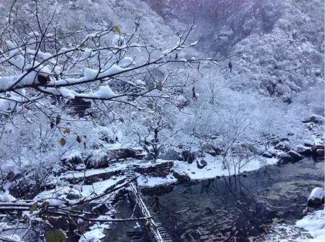 有一种鬼斧神工,叫八里沟的冰挂!