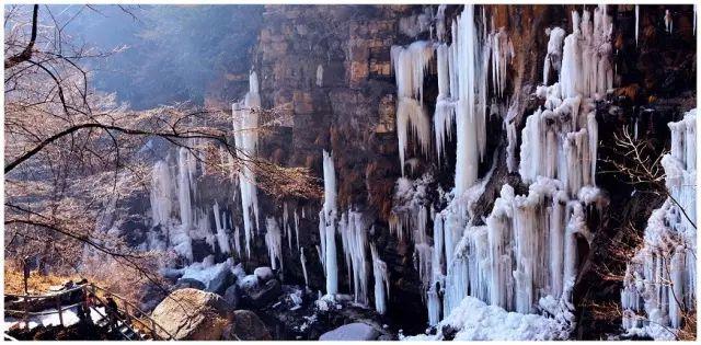 新乡南太行|已是悬崖百丈冰,犹有花枝俏。
