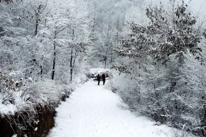 漫长的冬季,是否忘记了这里春夏秋曾经的精彩......