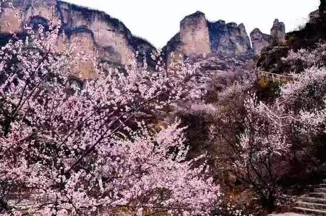 三八女神节,新乡南太行所有景区都是免免免!(详情猛戳)