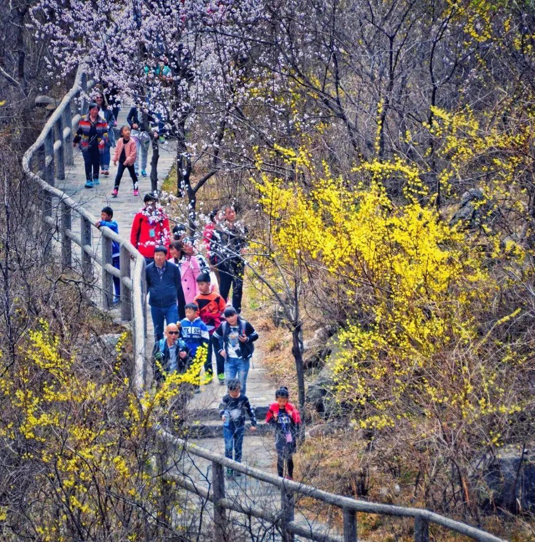 春暖花开,新乡南太行喜迎客流高峰!