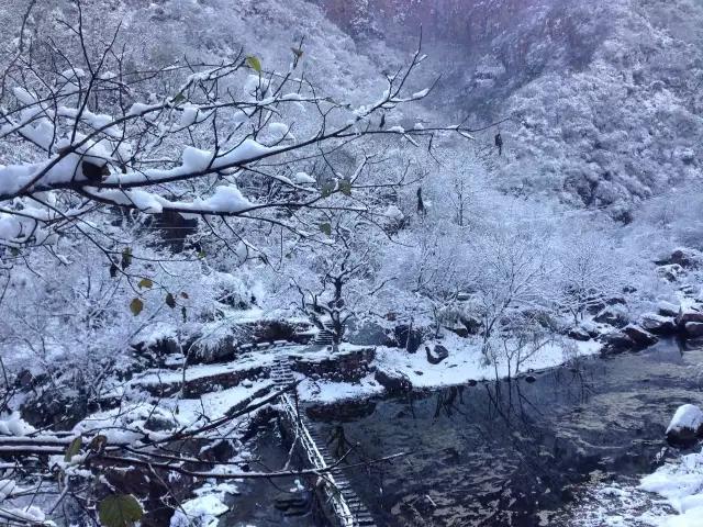 冬韵渐浓,新乡南太行冬季大片提前预告!