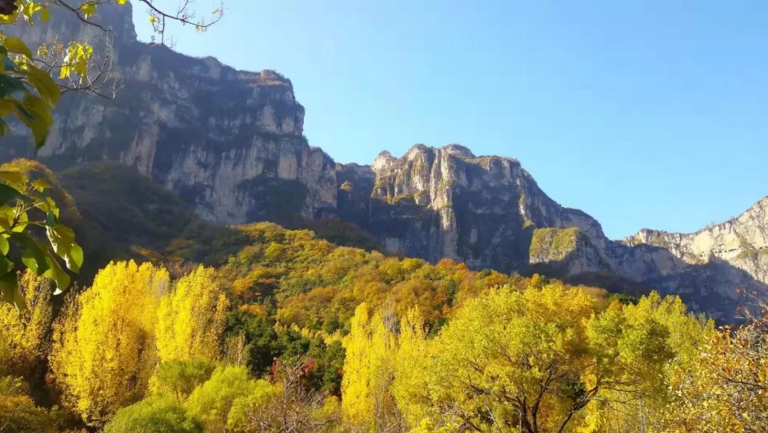 漫游新乡南太行,在树叶即将落尽的时节,收藏最后的秋意!