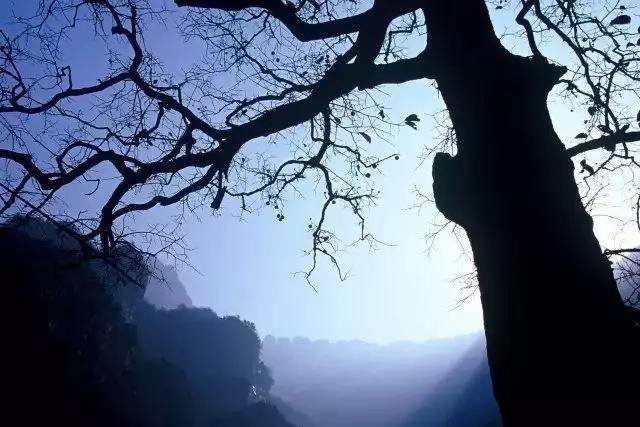 新乡南太行邀你享受光与影交错的冬日暖阳....