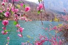 疫情过后,相约新乡南太行,行走在最美的春天里!