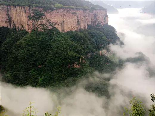 天界山——苍茫云海间,遥望浩无边