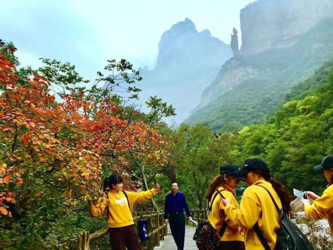 新乡南太行秋景正在绽放,进入最佳观赏期!