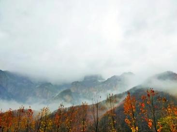 在树叶即将落尽的时节,雨后的新乡南太行别有一番韵味!