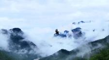 找一个雨后初晴的日子,来南太行邂逅最美云海奇观吧!
