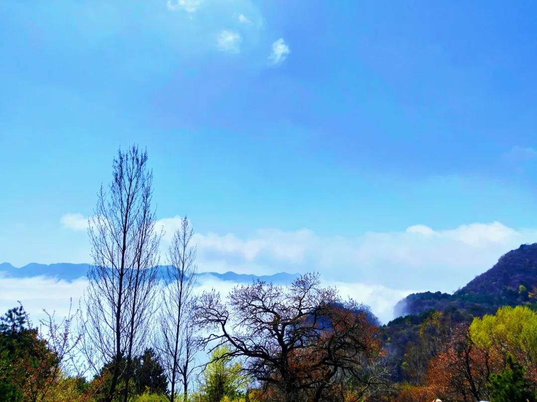 新乡南太行 谷雨过后,这里的云海美到窒息!