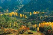 足尖上的风景!这里才是秋季徒步的最佳地点!