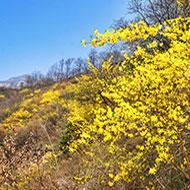 关山国家地质公园一日游